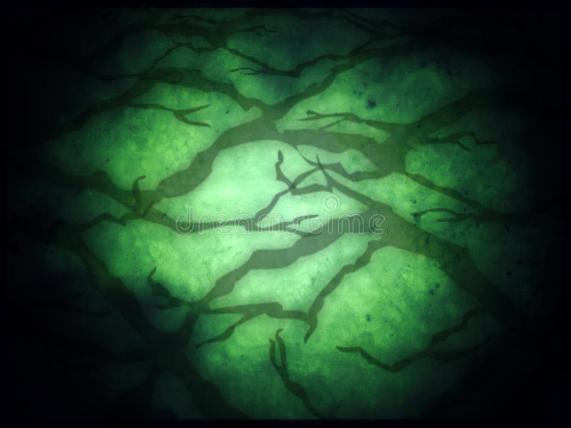 Dark creepy tree shadow on green background for halloween royalty free stock photography