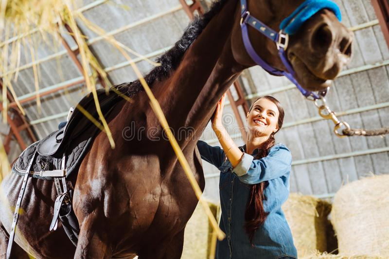 Dark-eyed woman wearing jeans clothes coming to stable with horse. Stable with horse. Dark-eyed pleasant looking woman wearing jeans clothes coming to stable royalty free stock image