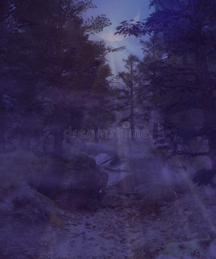 Dark foggy forest royalty free illustration