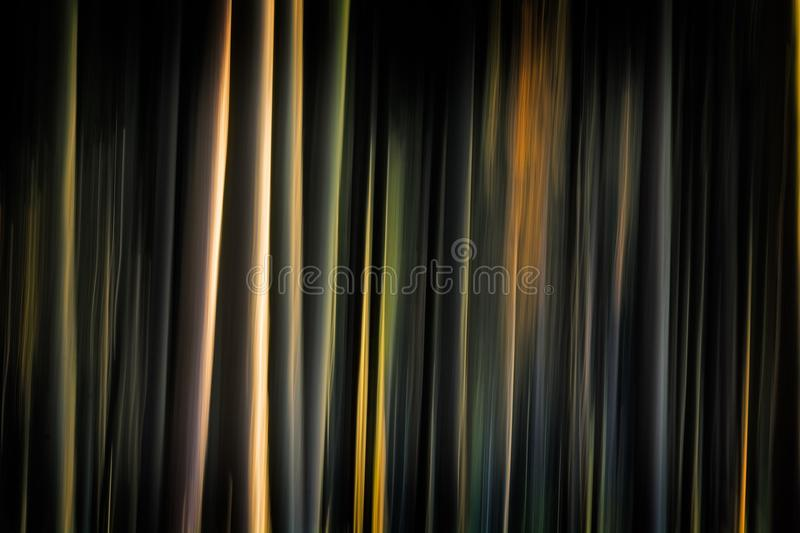 Dark Forest. Blurred dark forest created by intentional camera movement stock photo