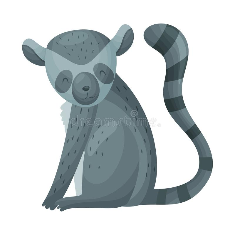 Dark gray lemur. Vector illustration on white background. Dark gray lemur with a striped tail sits. Vector illustration on white background stock illustration