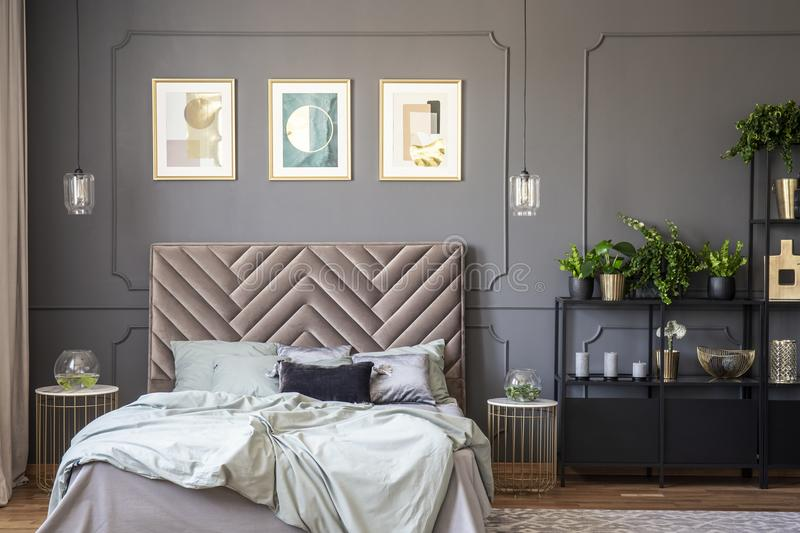 Dark grey bedroom interior with wainscoting on the wall, king-size bed with soft bedhead, three posters and metal rack with plant stock photography