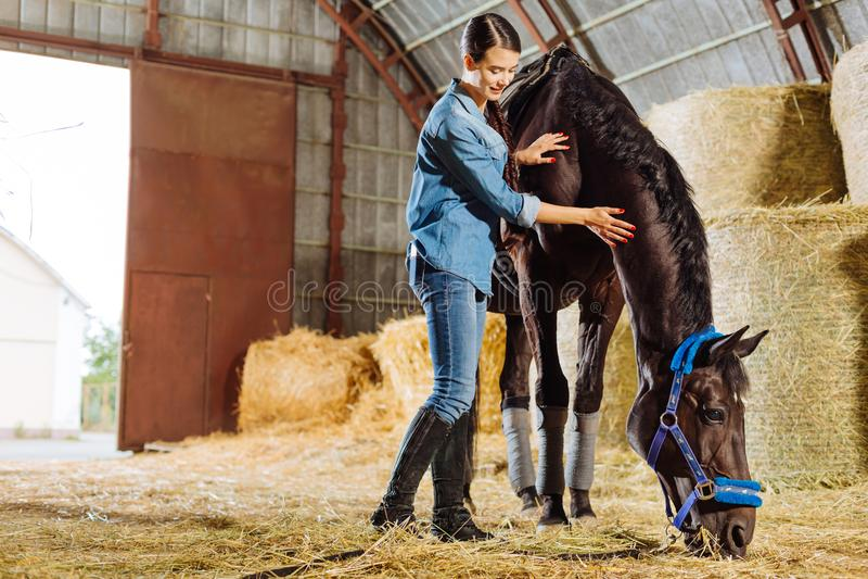 Dark-haired horsewoman wearing dark riding boots petting dark horse royalty free stock photo