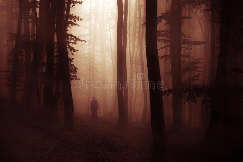 Dark Halloween apparition ghost in forest with fog. At night stock image