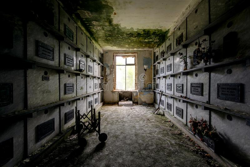 Download Dark Hallway Leading To Crypts U0026 Coffins   Abandoned Mausoleum  Stock Photo   Image Of