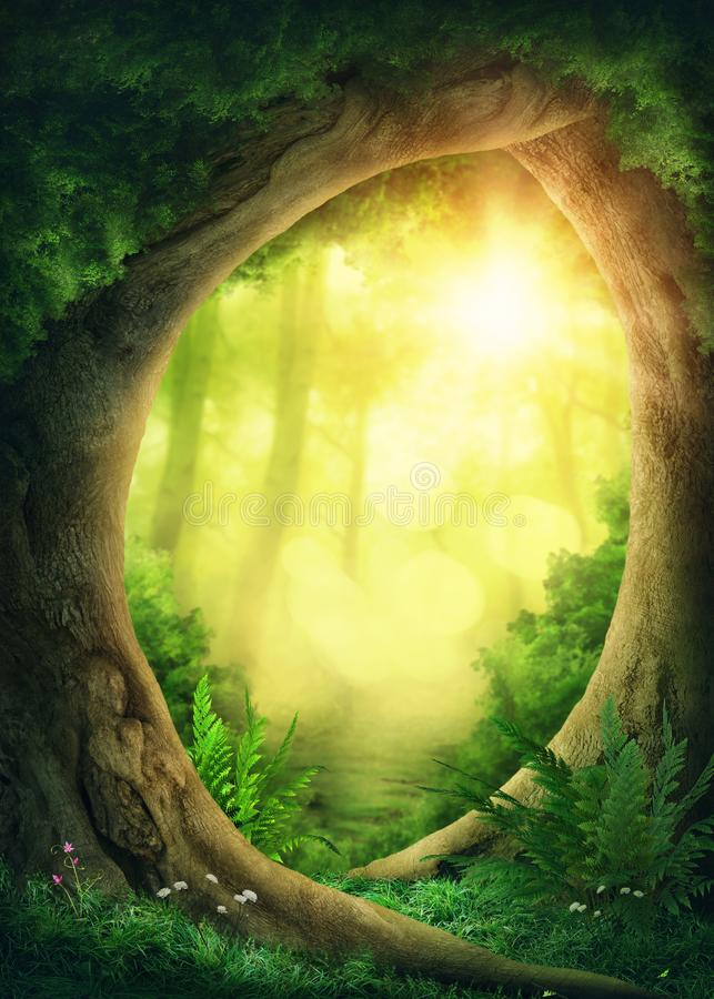 Dark magic forest. With sunshine stock illustration