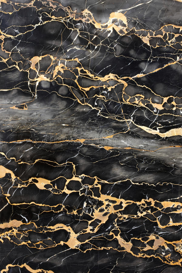 Free Dark Marble With Golden Veins Stock Image - 13869781