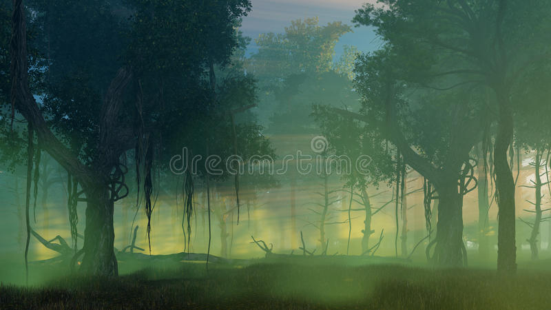 Dark misty forest at dawn or dusk. Dreamlike woodland scenery witn ancient trees in a scary mysterious dark forest at misty dawn or dusk. 3D illustration from my vector illustration