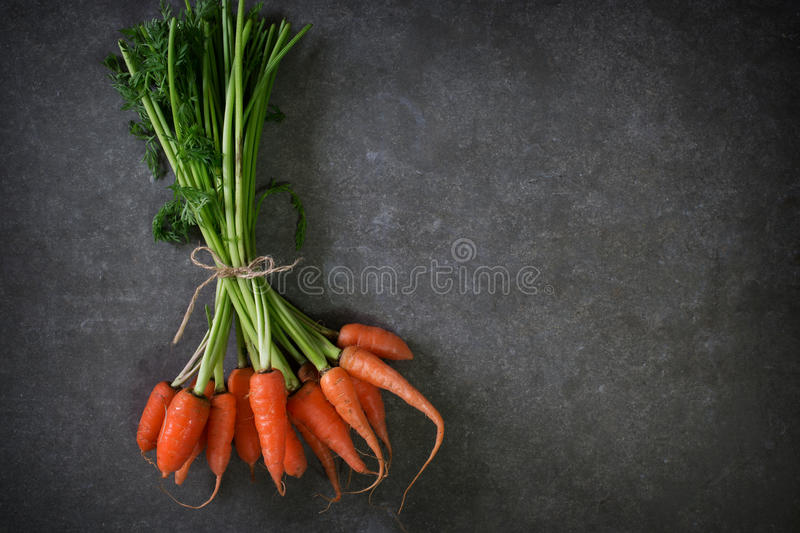 Dark moody food image of fresh carrot. Still life photography. clean food concept royalty free stock photography