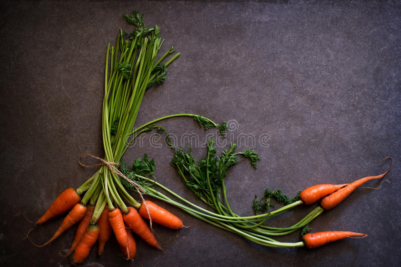 Dark moody food image of fresh carrot. Still life photography. clean food concept royalty free stock image