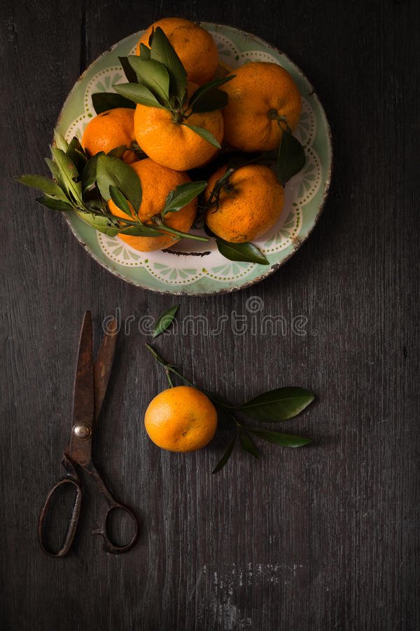 Dark moody food image of fresh ripe orange. Still life photography. Dark moody food image of fresh ripe citrus on wooden table royalty free stock images