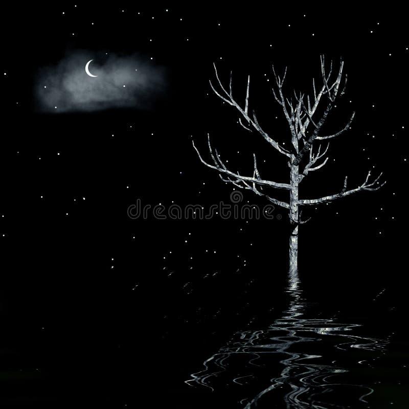 Dark Night Royalty Free Stock Photography