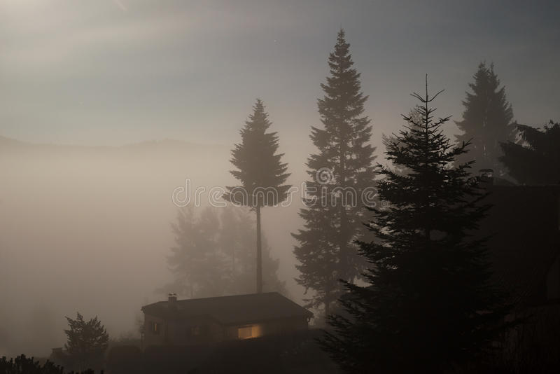 Dark night haunted spooky challet in fog trees stock photos