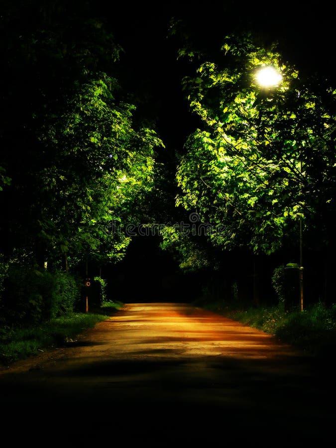Dark park alley. In reghin ,romania stock image