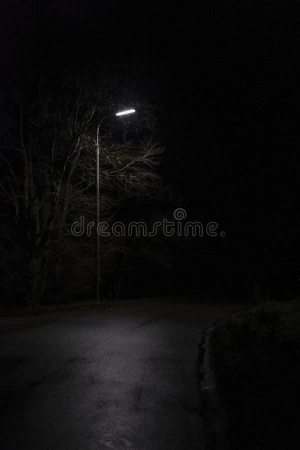 A dark park with a single night lamp royalty free stock images