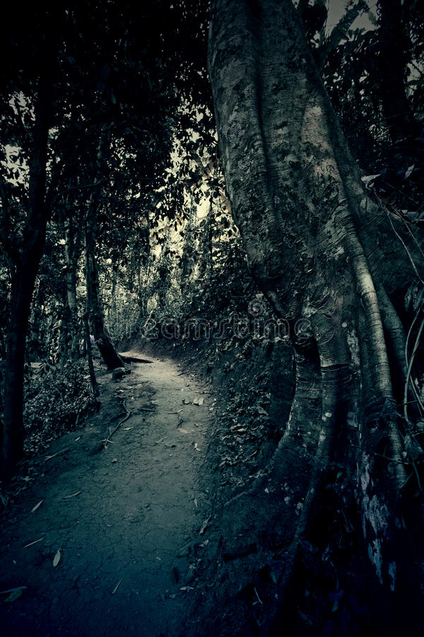 The Dark Path. With vintage style background stock image
