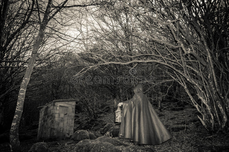 Dark presence in the woods. Portrait of dark presence in the woods royalty free stock photo