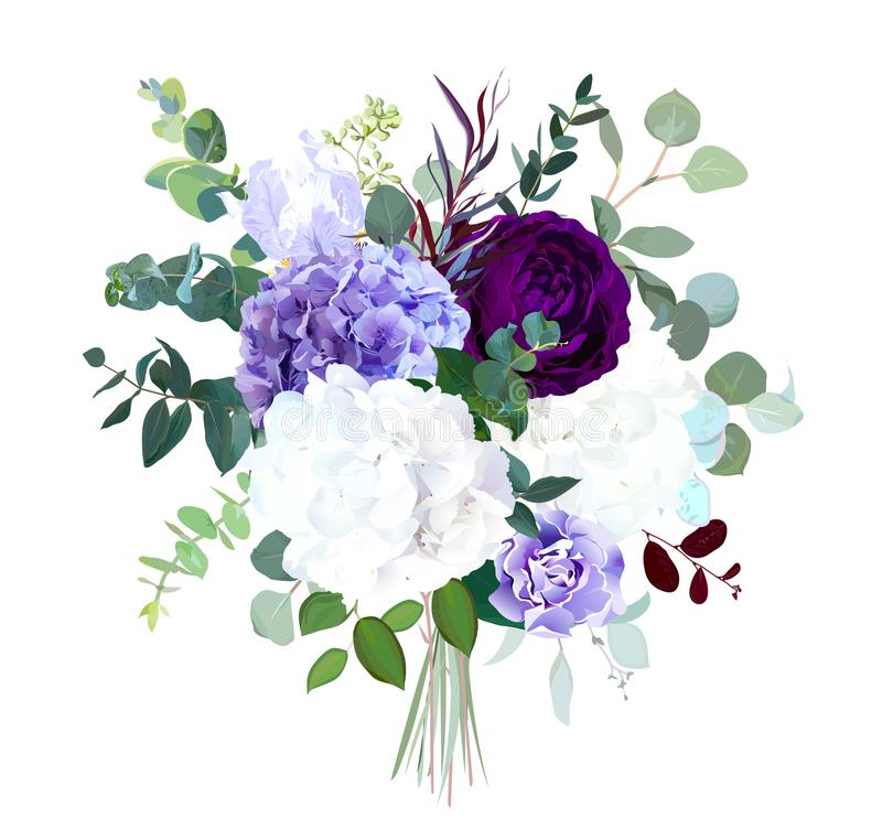 Dark purple garden rose, white and lilac hydrangea, violet iris, royalty free illustration