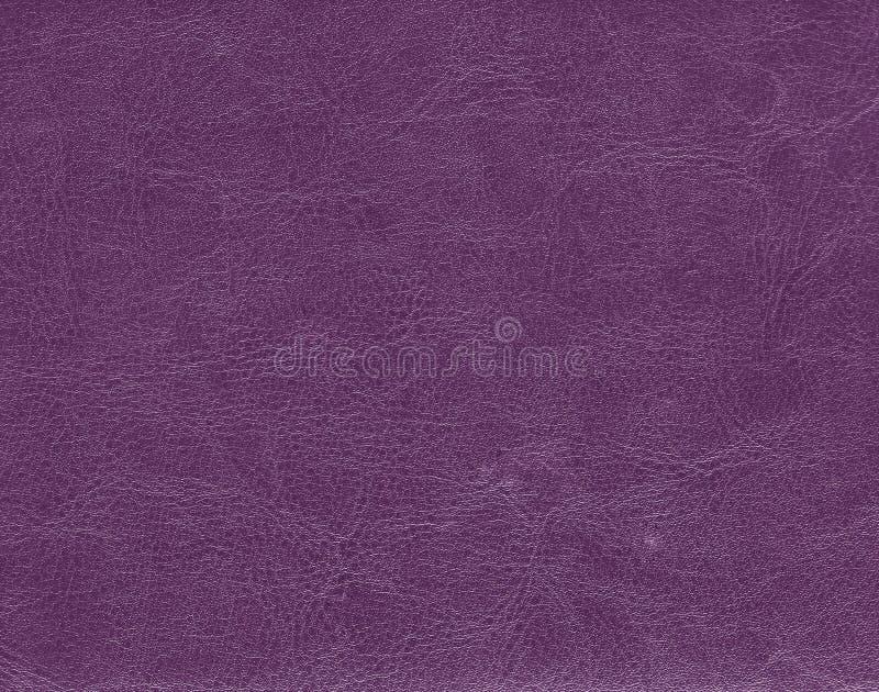 Dark purple leather texture. stock photography