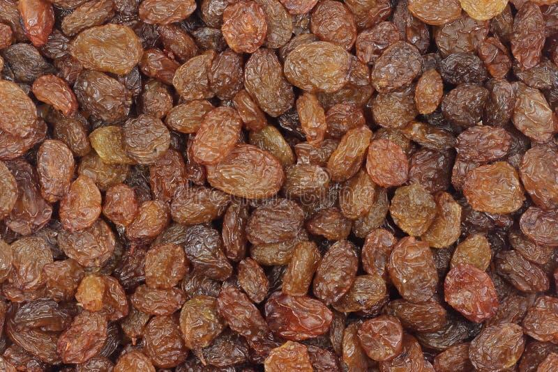 Dark raisins. Dark abstract background sweet raisins stock image