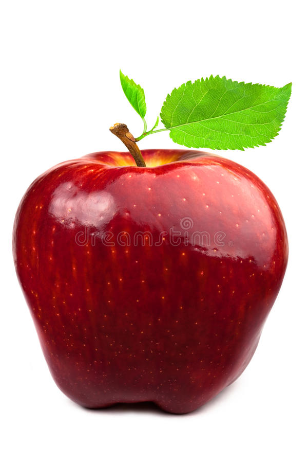 Dark-red apple with leaves stock photos