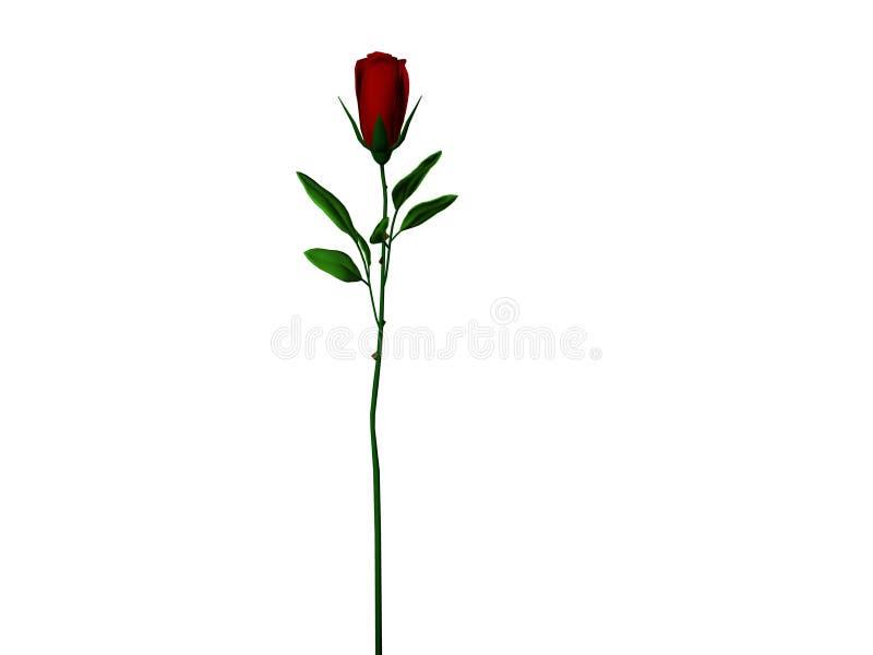 Dark Red Long Stem Rose stock illustration