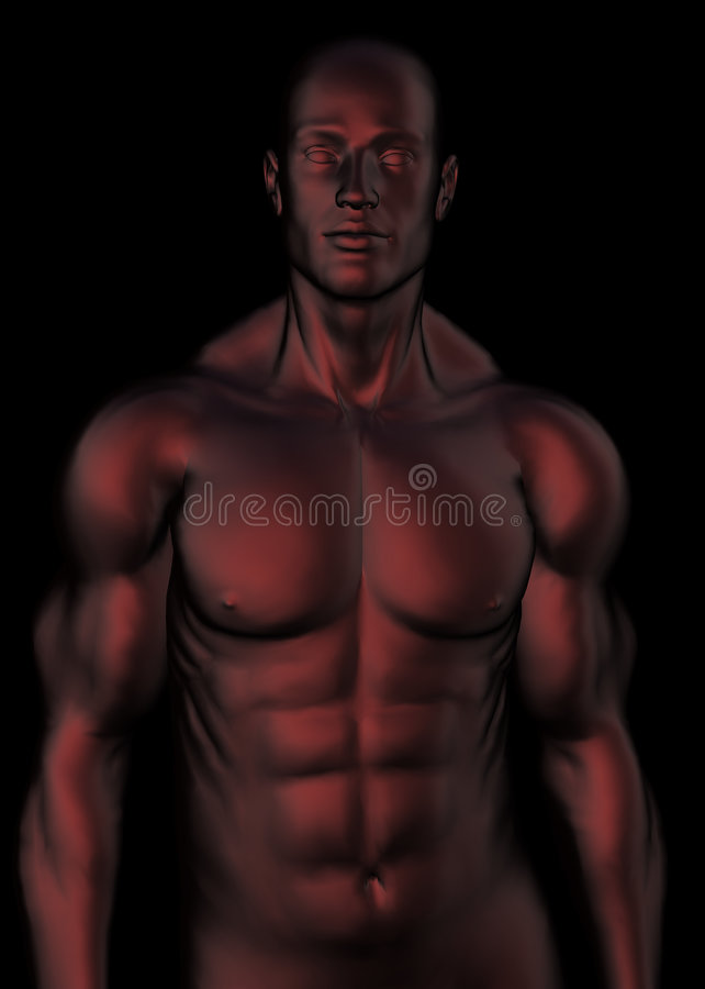 dark red male torso royalty free stock photos