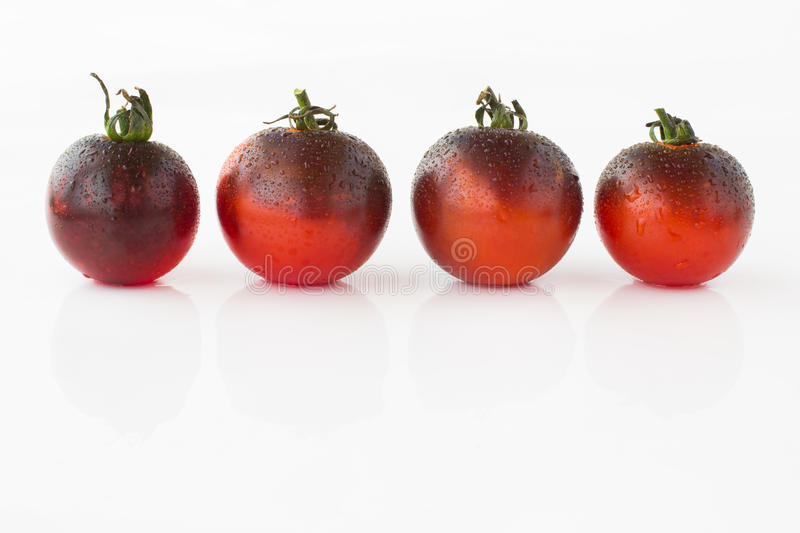 Dark red tomatoes with water droplets on white background. Dark red tomatoes with water droplets on a white background royalty free stock images