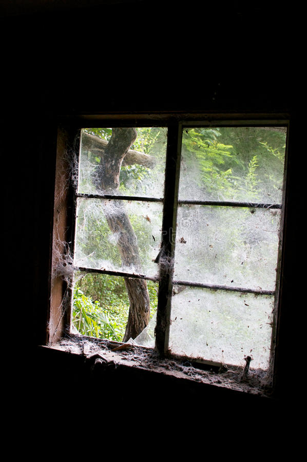 Download In dark room looking out stock image. Image of dust, room - 37863971