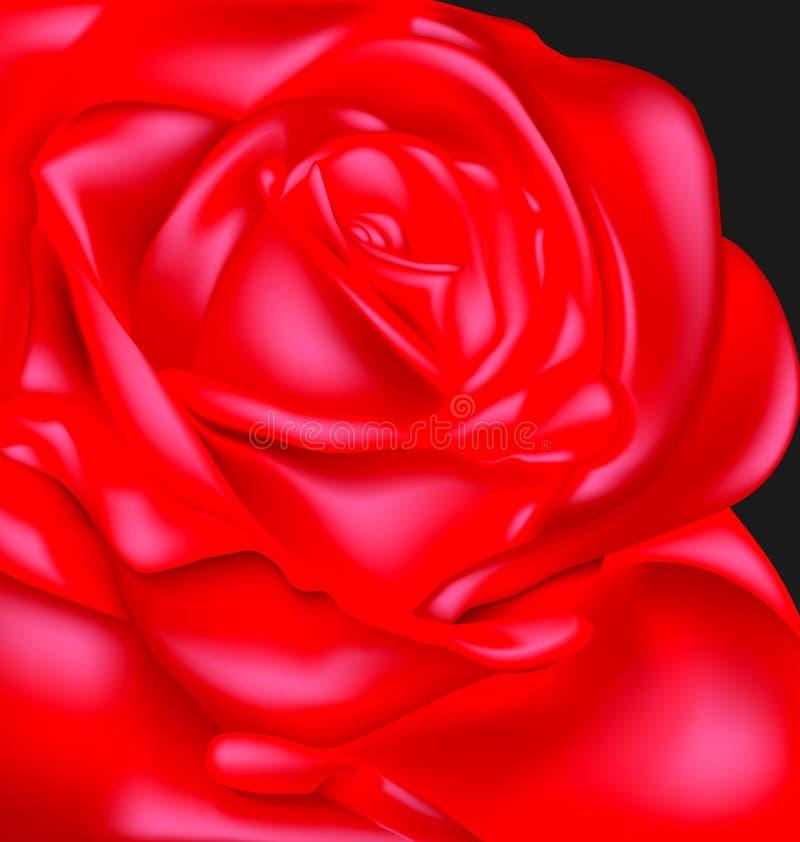 Dark and scarlet rose. Black background and red-colored fantasy flower rose stock illustration