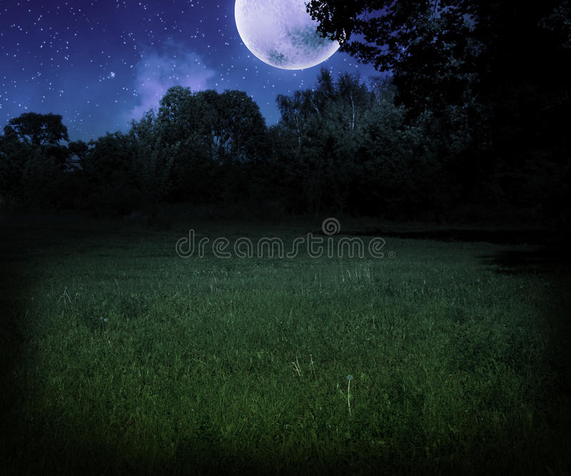 Dark Scary Meadow at Night Halloween Background stock photos