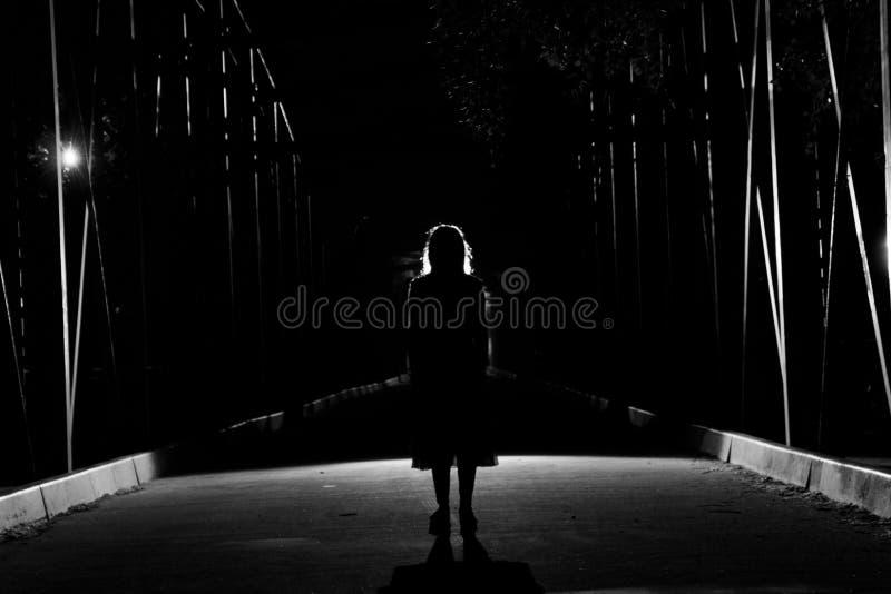 Dark silhouette royalty free stock image