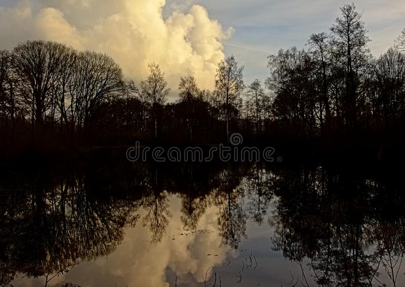 Dark silhouettes of trees and evening sky reflecting in the lake. Dark silhouettes of trees and evening sky with clouds reflecting in the water of the lake in royalty free stock image