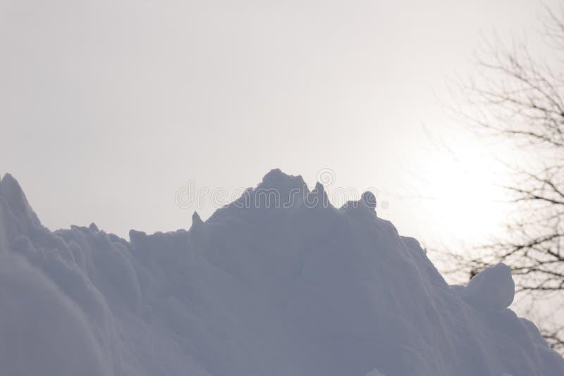 Dark Snow with Bare Tree and Hazy Sun Behind It stock photos