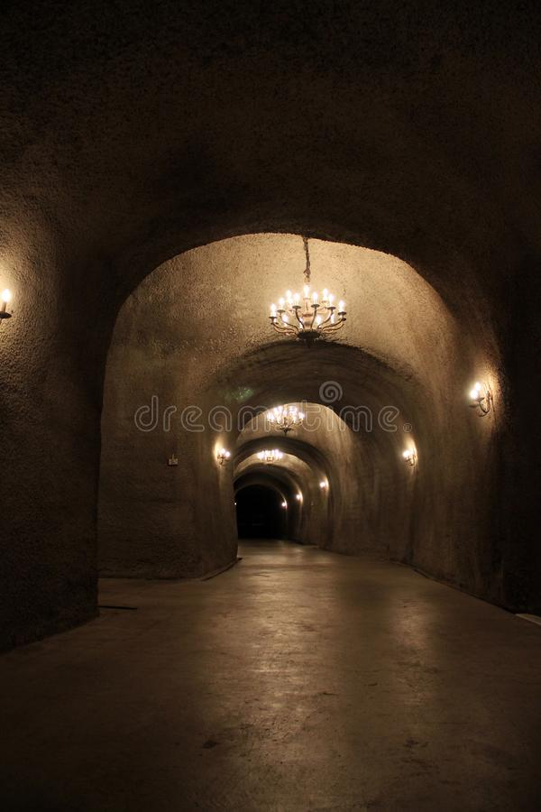 Dark tunnel with lights in a winery cellar stock images