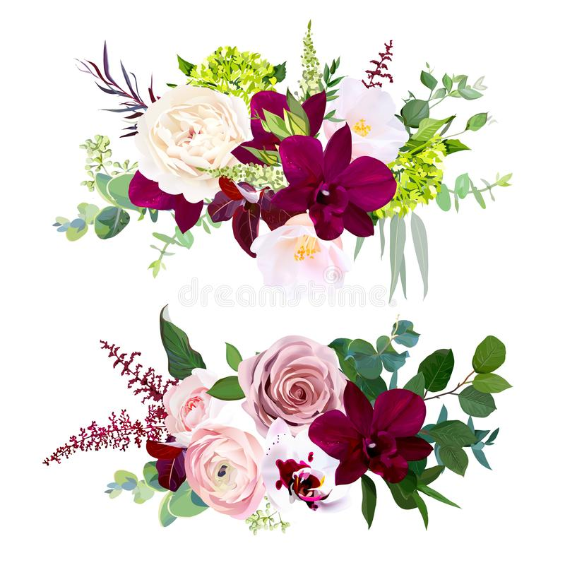 Dark and white orchid, garden dusty rose, ranunculus, pink camellia, green hydrangea stock illustration
