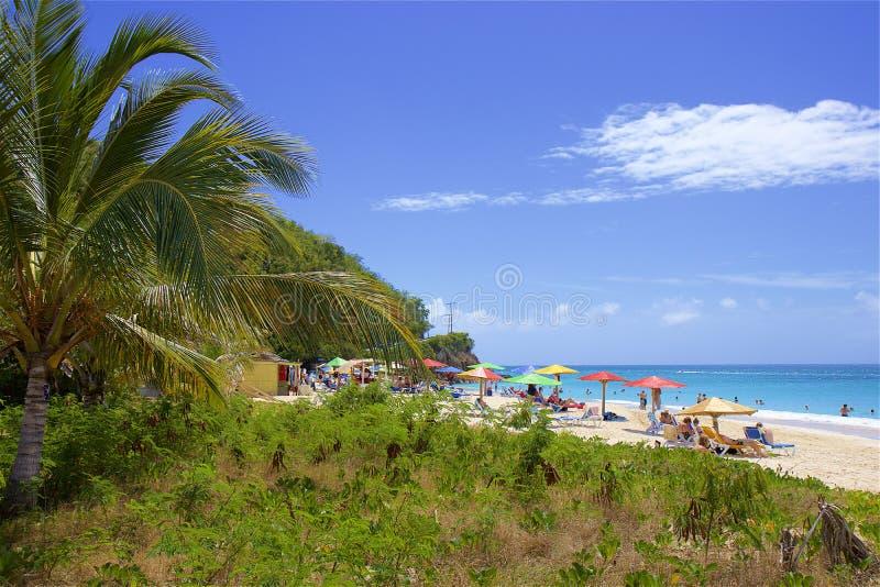 Darkwood strand i Antigua som ?r karibisk fotografering för bildbyråer
