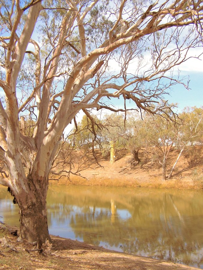 Darling River royalty free stock images