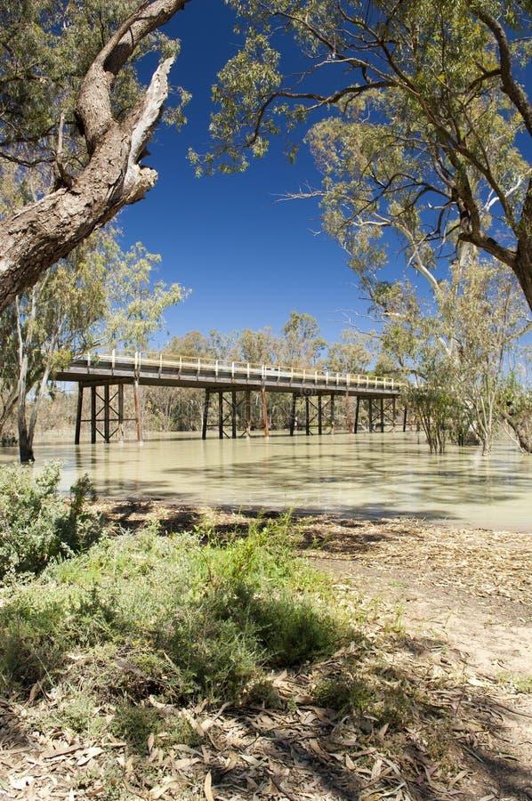 Darling River, Australia stock images