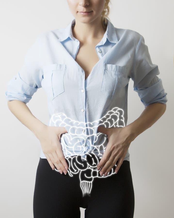 Darmenvisualisatie op de close-up van het vrouwenlichaam stock foto's