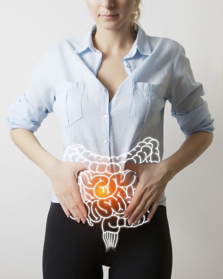 Darmenvisualisatie op de close-up van het vrouwenlichaam stock foto