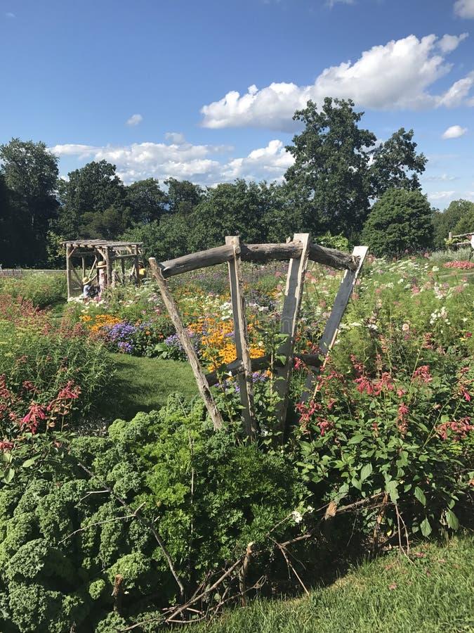 darmstadt trädgård arkivbilder