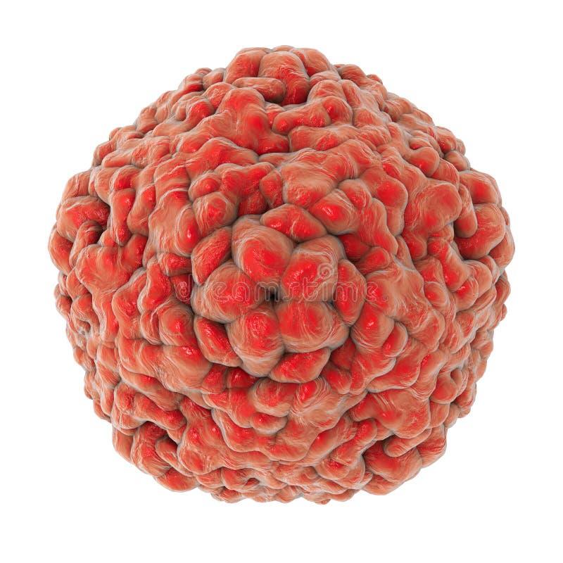 Darmvirus D68 dat ademhalingsbesmettingen in kinderen veroorzaakt vector illustratie