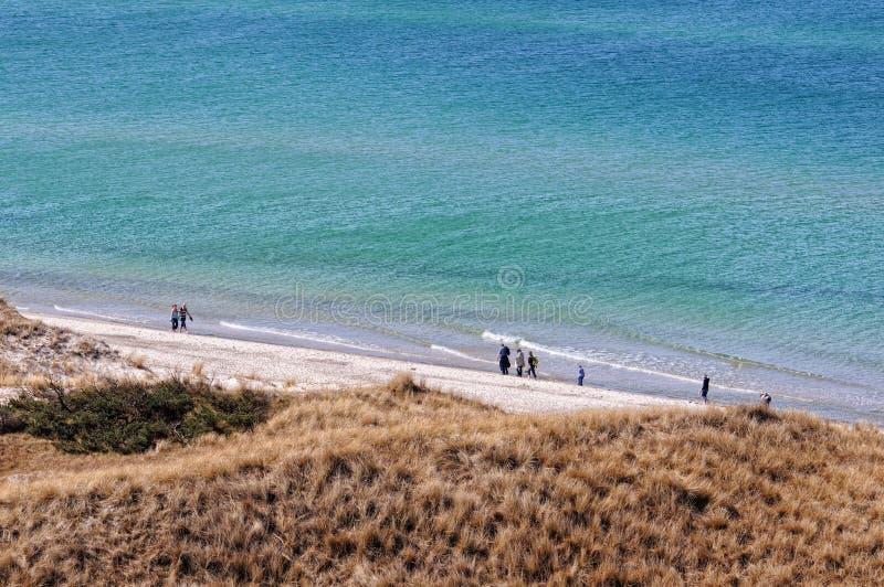 Darsser Ort na praia do mar Báltico na península de Darss fotografia de stock