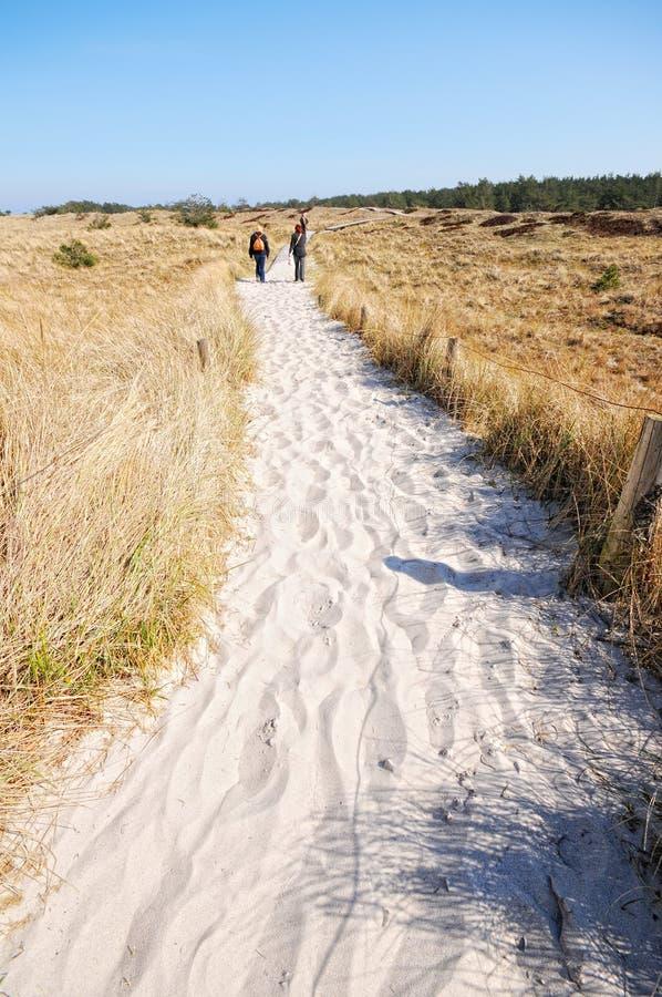 Darsser Ort na praia do mar Báltico na península de Darss fotos de stock