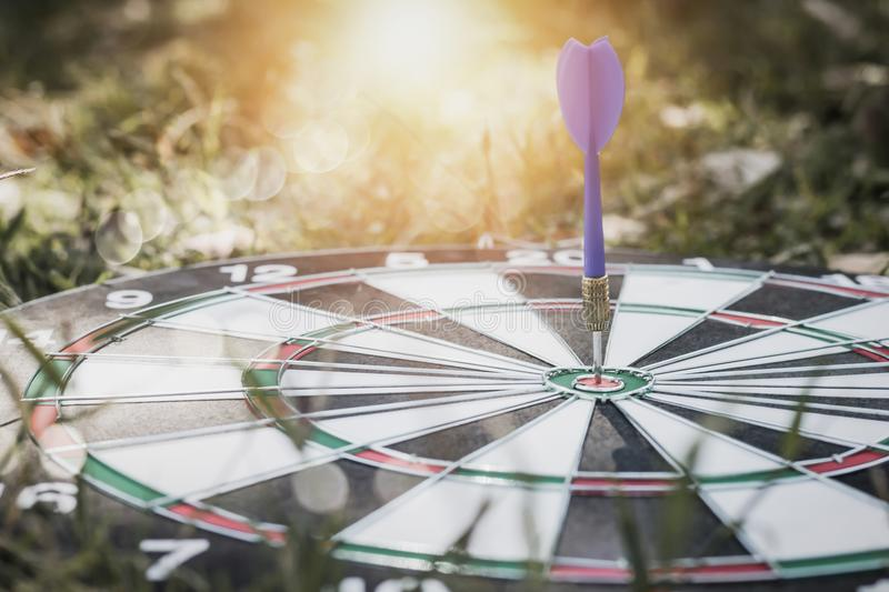 Dart on board on grass background, concept as success and goal stock photo