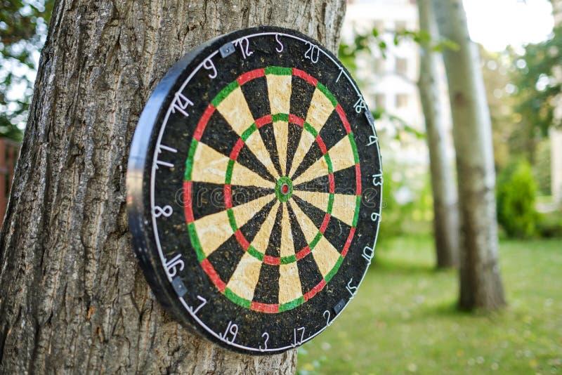 Dartboard in the yard on the tree 3 stock photo