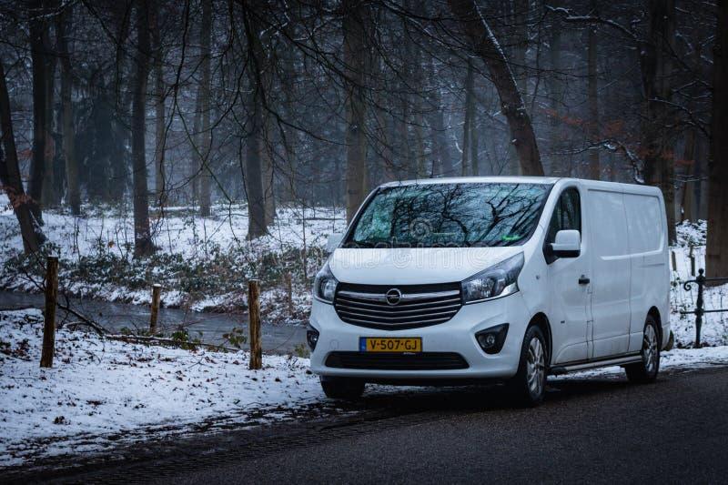 DARTHUIZEN, holandie - LUTY 1 2019: Biały Opel Vivaro parkujący wzdłuż drogi na zima dniu w Darthuizen zdjęcia stock