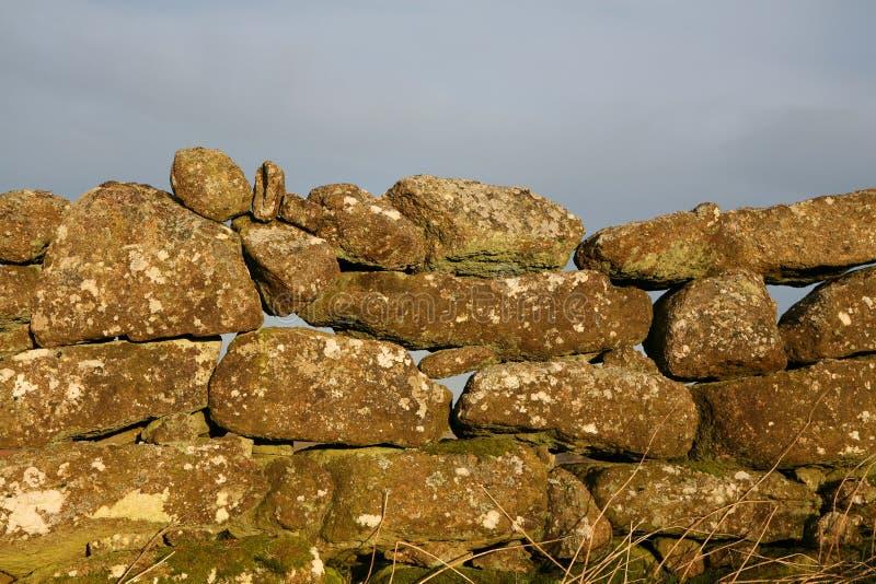 dartmoor石块墙 免版税库存图片