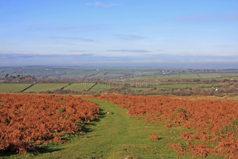 Dartmoor, Devon royalty-vrije stock foto